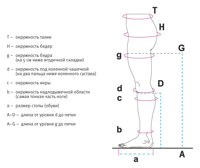 Венотекс - как выбрать размер